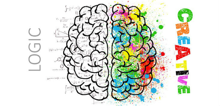 Le stagioni del cervello - ciclo di incontri Castelfranco Emilia
